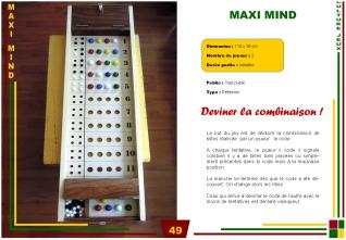 P49-maxi mind